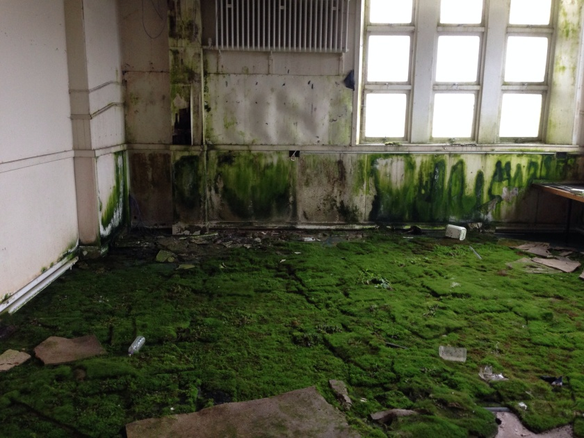 The School Playing Fields. Indoors.